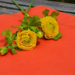 Egyszínű terítő narancs - pamut asztalközép