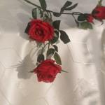 Krém színű teflonos damaszt - krém színű terítő