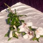 Púderrózsaszín asztalközép - hímzett inda mintás