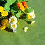 Asztalterítő: egyszínű pamut - olajzöld
