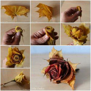 Rózsa falevélből