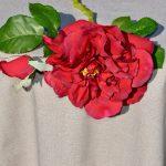 Nyers színű terítő - egyszínű pamut asztalterítő